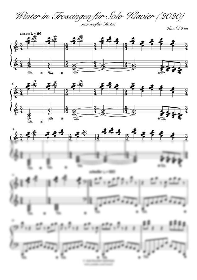 피아니스트 아인슈타인 - 트로싱엔의 겨울 (백건만 사용한 자작곡)
